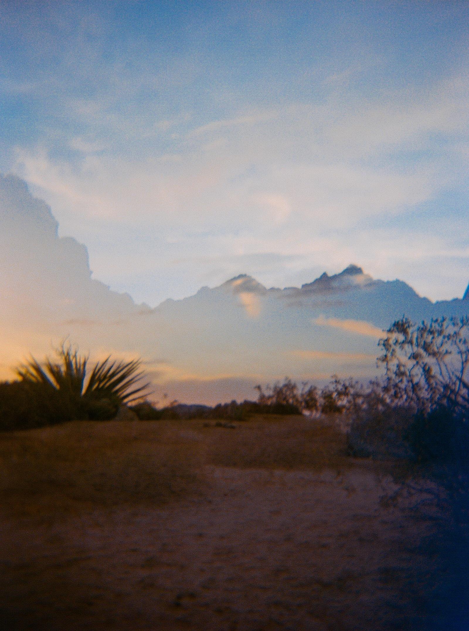 Joshua Tree double exposures on film by San Diego portrait photographer Lauren Nygard